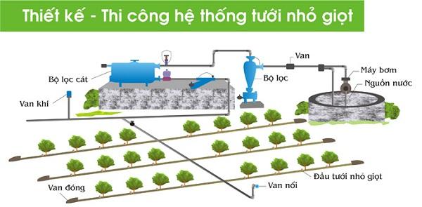 hệ thống trồng rau thủy canh